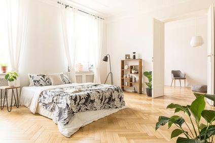 Sind Pflanzen im Schlafzimmer wirklich schädlich?