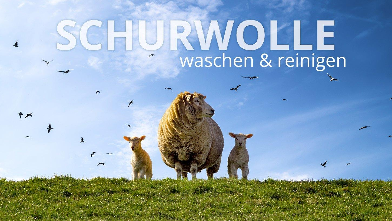 24-190430_schurwolle_waschen01