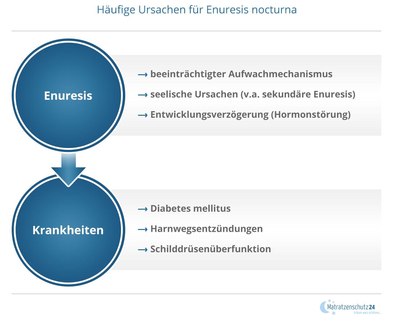 Grafik zeigt mögliche Ursachen einer Enuresis