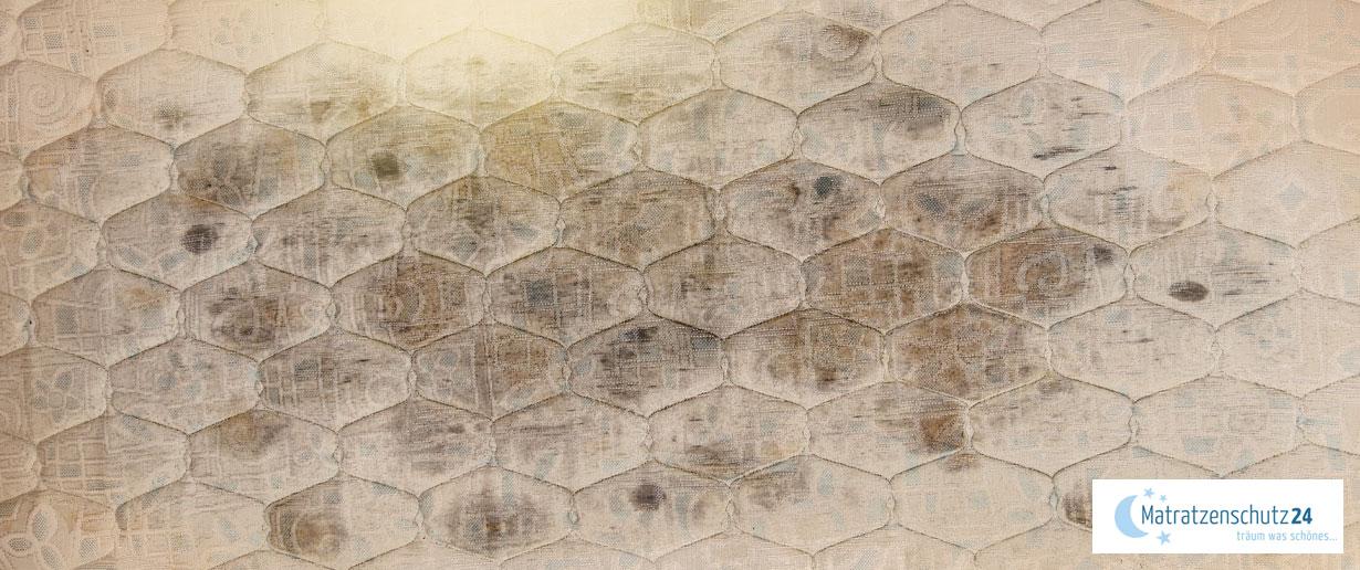 unzählige Stockflecken auf Matratze