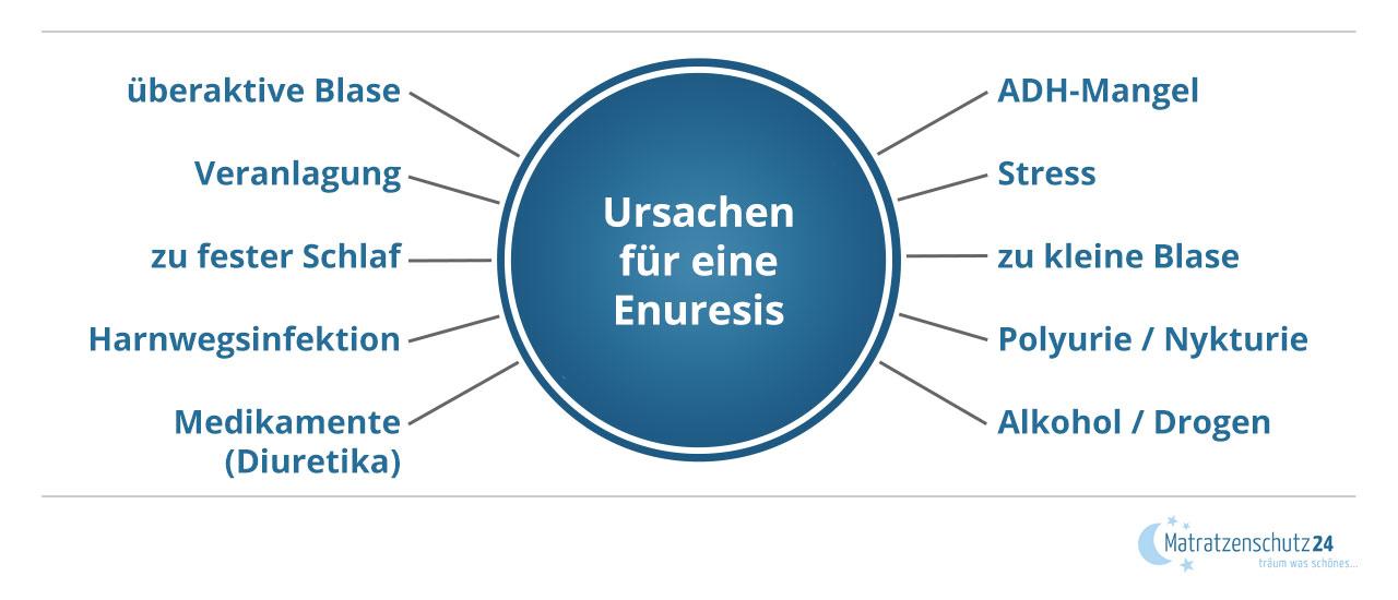 Grafik, die diverse Ursachen einer Enuresis aufzählt