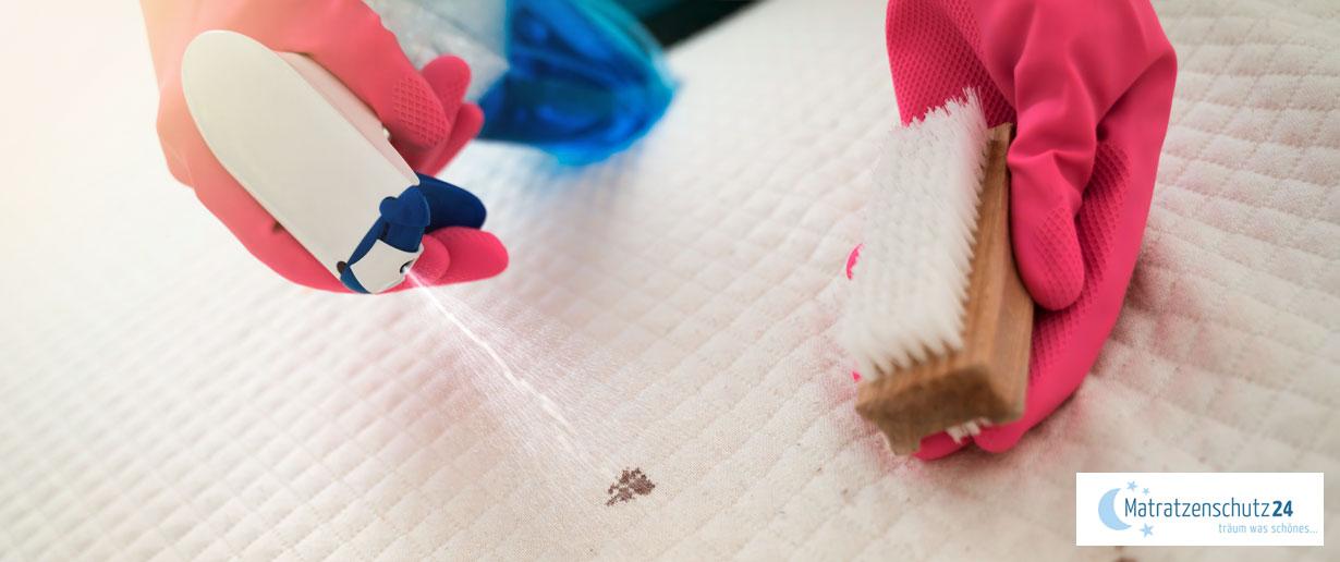 Flecken von der Matratze ausbürsten