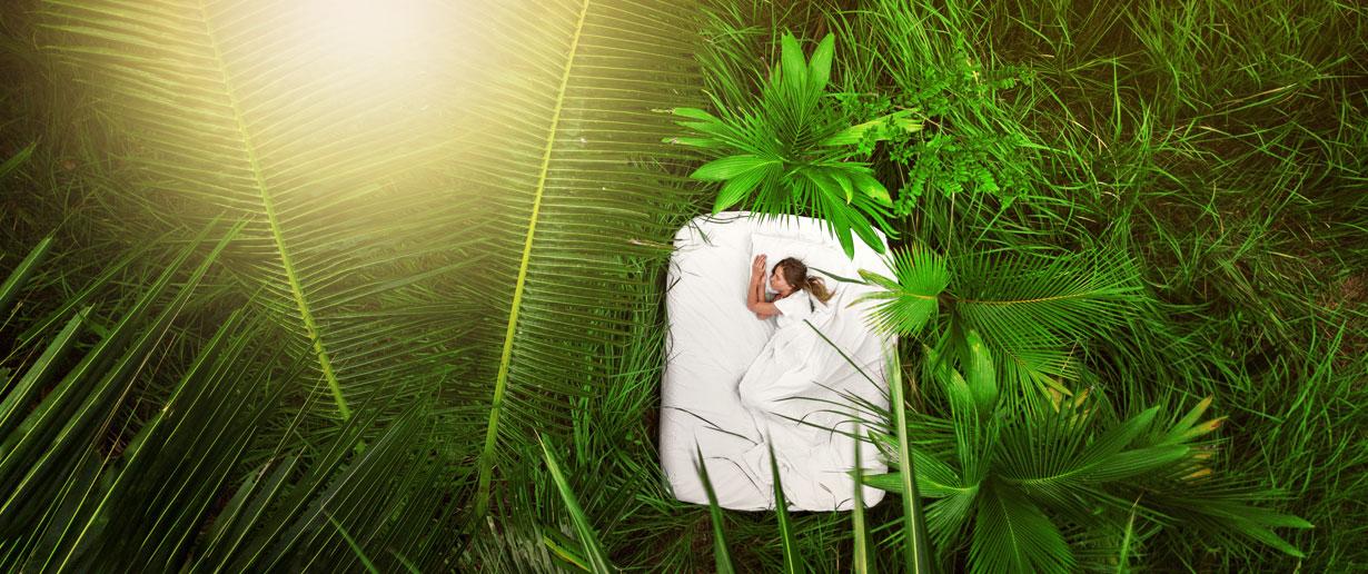 Bett inmitten unzähliger grüner Pflanzen